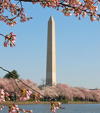 Qu� visitar en Washington