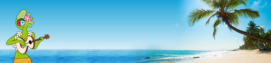 Verao Caribe