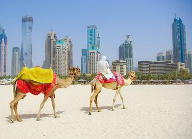 Emiratos �rabes: Dubai al Completo
