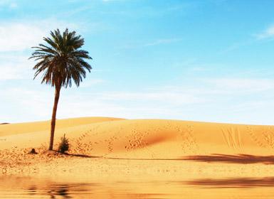 Marruecos: Escapada al Desierto