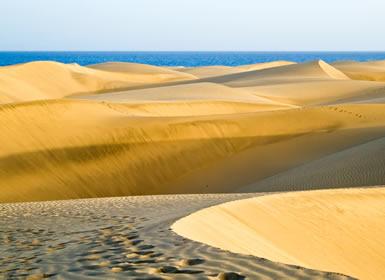 T�nez: Desierto y Playas Al Completo Plus