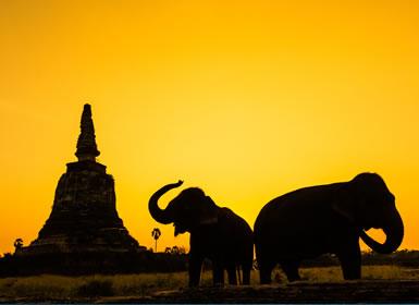 Tailandia: Del R�o Kwai al Tri�ngulo de Oro y Phuket A Fondo