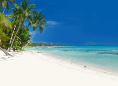 Viajes Punta Cana - B�varo