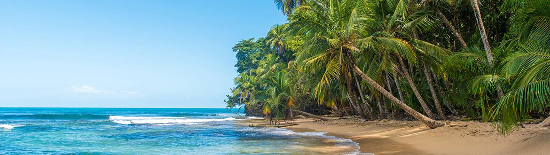 Te invitamos a descubrir uno de los rincones más fascinantes y cautivadores del planeta, en un recorrido en el que se mezcla la moderna y bulliciosa Ciudad de Panamá, junto con sus edificios coloniales, con la exuberante naturaleza de bella Costa Rica. Un viaje mágico y lleno de contrastes en el que podrás admirar los paisajes más sorprendentes. Parques Nacionales, majestuosos volcanes y selvas tropicales bordeando las plácidas aguas del mar Caribe.