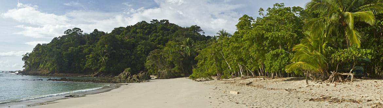 ¿Te gustaría disfrutar de un espectáculo natural incomparable? Si es así, te invitamos a descubrir uno de los rincones más fascinantes y cautivadores del planeta: la bellísima Costa Rica. Un país mágico y lleno de contrastes, en el que podrás admirar los paisajes más sorprendentes: Parques Nacionales, el Pacífico, volcanes, el bosque nuboso de Monteverde...  ¿Te lo vas a perder?
