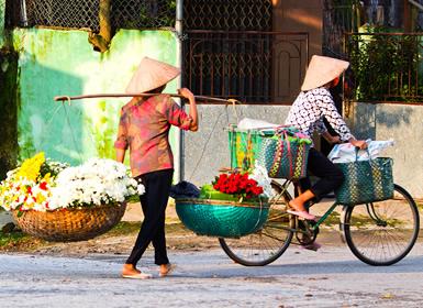 Vietnam: De Sapa a Saigón