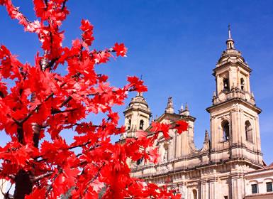 Colombia: Bogotá y Cartagena de Indias con P.N. Tayrona e Islas del Rosario