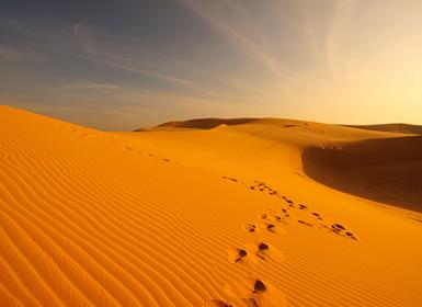Especial Semana Santa Desierto de Dubai