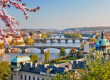 Combinado: Praga, Ámsterdam y París en avión
