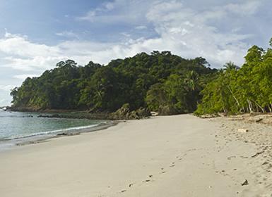 Costa Rica: Tortuguero, Arenal, Monteverde y Manuel Antonio