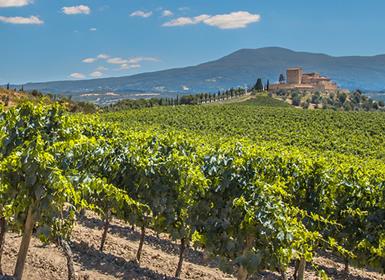 La Rioja: La Rioja