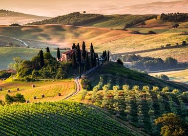 Italia: Región de La Toscana con Roma