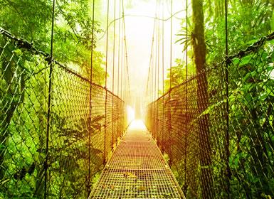 Costa Rica: Tortuguero, Caribe, Arenal, Monteverde y Guanacaste