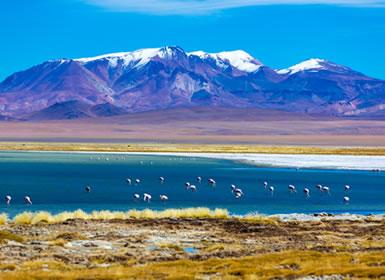 Chile: Santiago, Atacama, Puerto Varas y Chiloe
