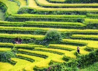 Tailandia: Naturaleza Norte