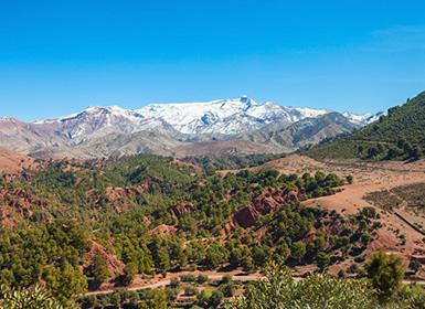 Marruecos: Ruta de las Kasbahs Al Completo