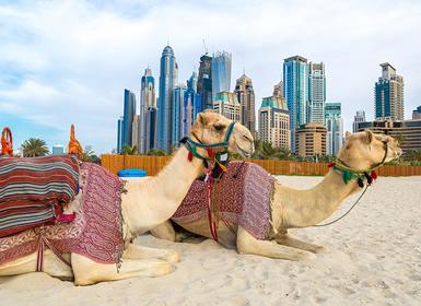 Emiratos Árabes: Dubai, Sharjah y Abu Dhabi Al Completo