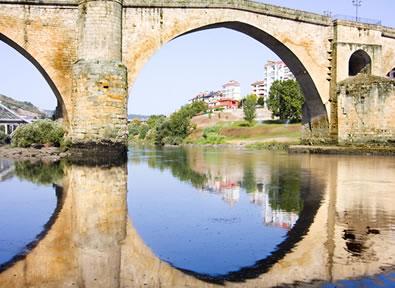 Trenes Alvia Madrid - Ourense