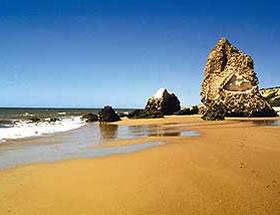 Playas de Do�ana