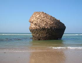 Playa de Matalasca�as