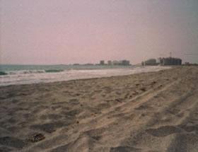 Playa de Ensenada de Esparto