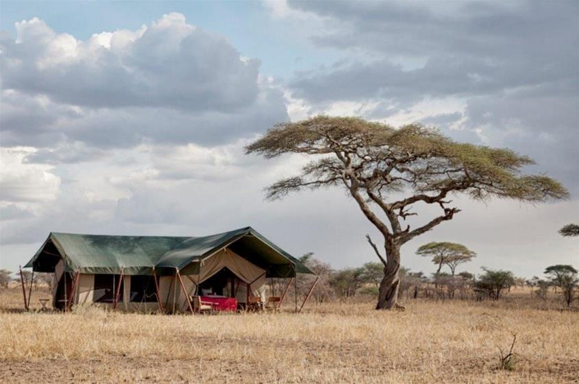 Circuito Zanzibar : Kenia y tanzania safari en zanzíbar