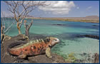 Islas Galpagos