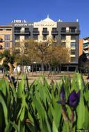 HotelSenator Granada Spa