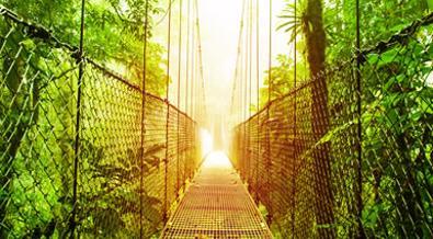 Costa Rica: Naturaleza A Fondo y Playas