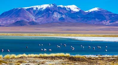 Chile Al Completo A Tu Aire