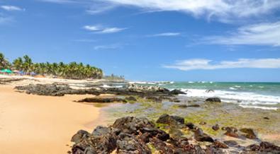 Colores de Brasil con extensión a Praia do Forte