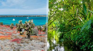 Ecuador: Galápagos, Andes y Amazonia