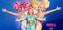 Priscilla, el musical: Un espectáculo total