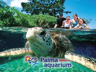 Entradas a parques tem ticos acu ticos naturales acuarios Entradas aquarium valencia