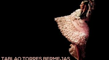 Tablao Torres Bermejas - Espectáculo Flamenco   notengoplan