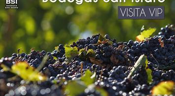 Bodegas San Isidro - Visita Vip   notengoplan