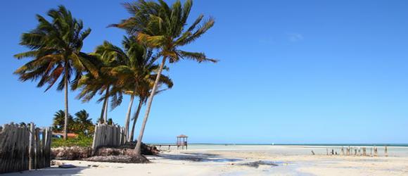 Hoteles en Cayo Guillermo