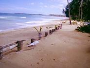 Casitas de Playa en Playa Coson