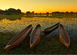La Ruta del Okavango