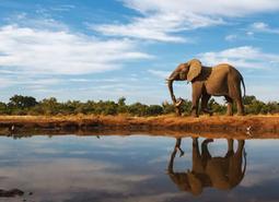 Botswana al completo