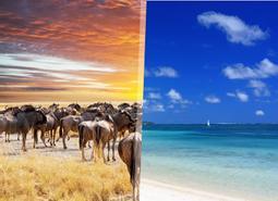 Esencias de Kenia y Mauricio