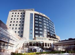 HotelIru�a Palace Tres Reyes