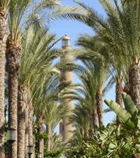 Introducción Gran Canaria