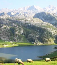 Introducción Cantabria