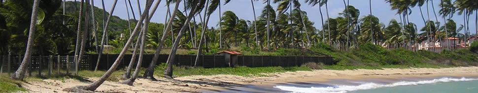 Guía Punta Cana