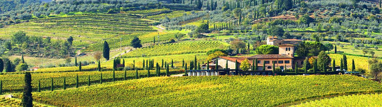 Italia: Ruta por La Toscana, desde Florencia a Siena, a tu aire en coche