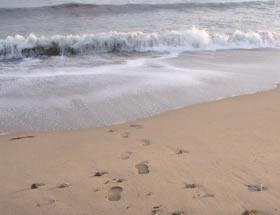 Playa La Llosa