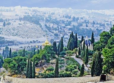 Monte de los Olivos, Jerusalén