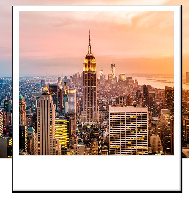 Hermosa Nueva York Bar Certificado De Vigencia Molde - Cómo ...
