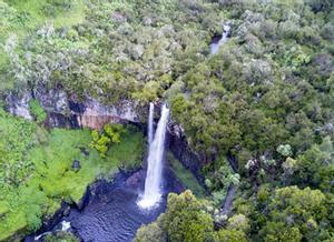 Parque Nacional de Aberdare